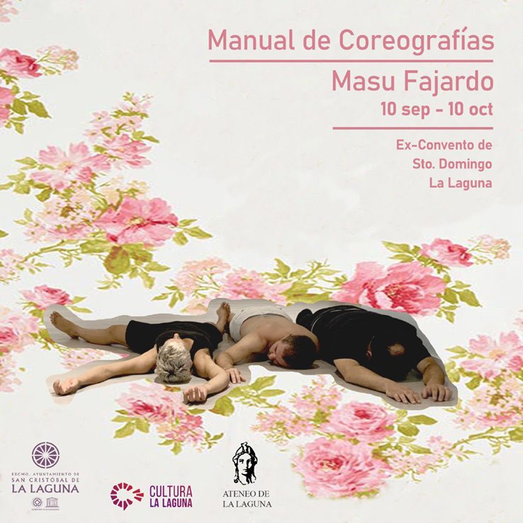 manual de coreografías
